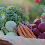 Histamine Intolerance: What it is, where it comes from, how to fix it.