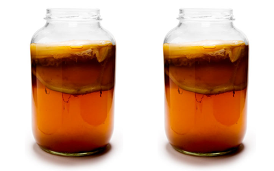 What Is Kombucha and Why Is It So Beneficial for You?