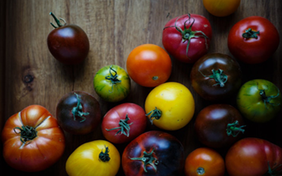 7 Ways to Transform Your Life With A Healthy Plant Based Diet